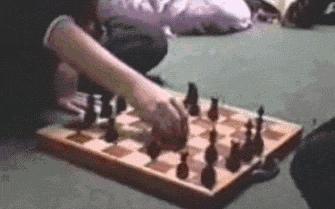 Chomik i szachy