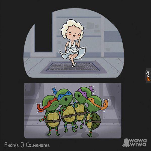Żółwie mają dobre widoki