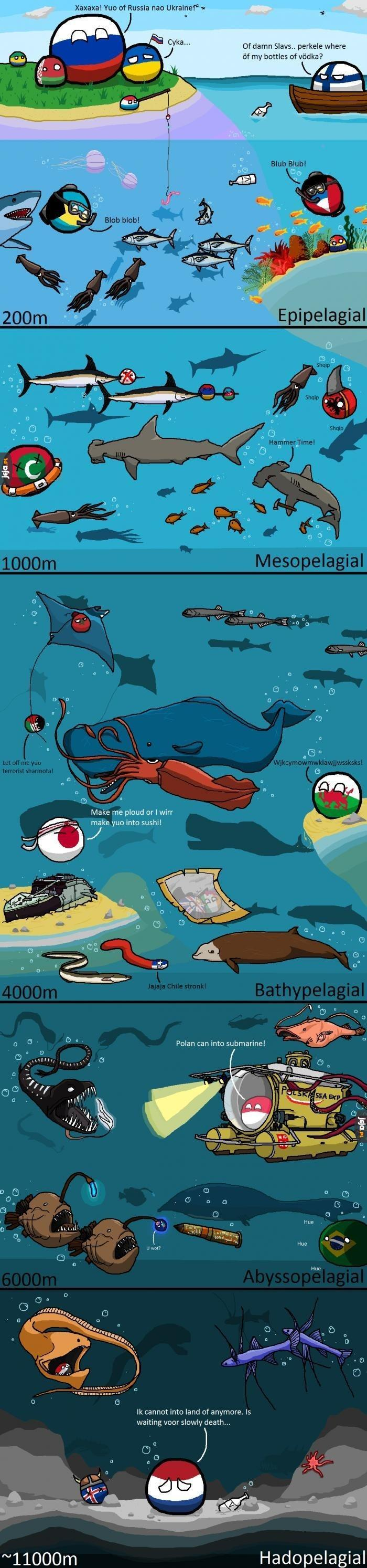 W morskich głębinach