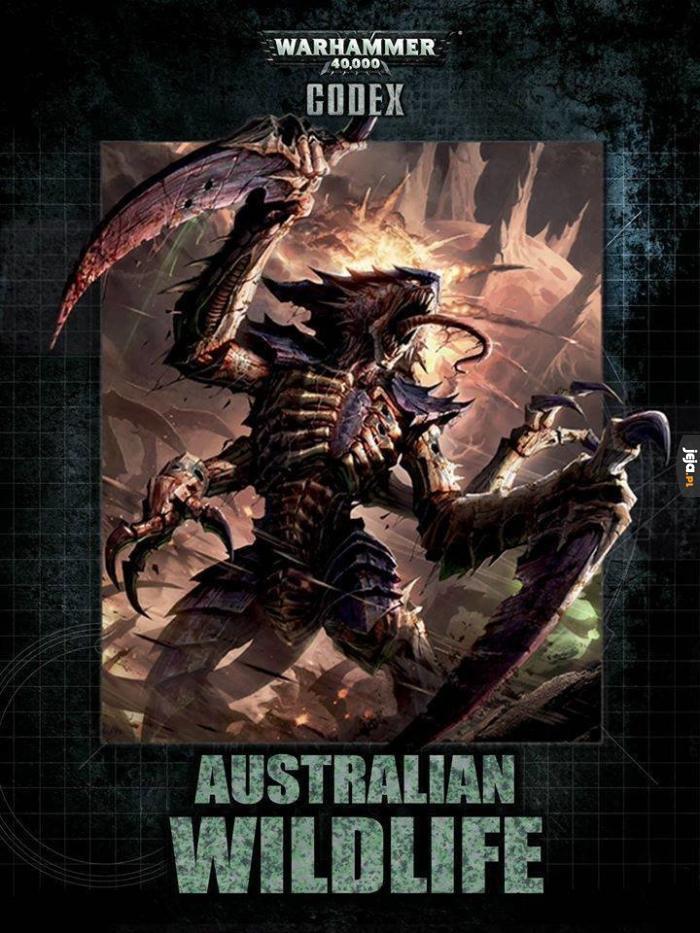 Przewodnik po australijskich zwierzaczkach