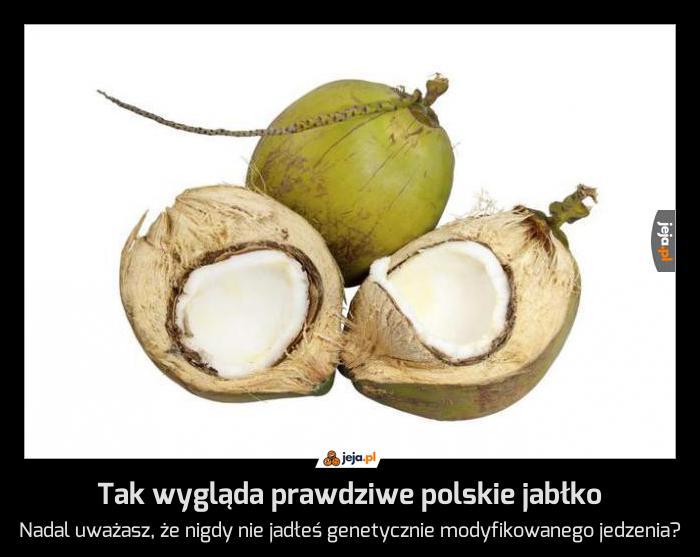 Tak wygląda prawdziwe polskie jabłko
