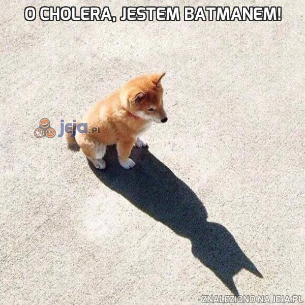 O cholera, jestem Batmanem!