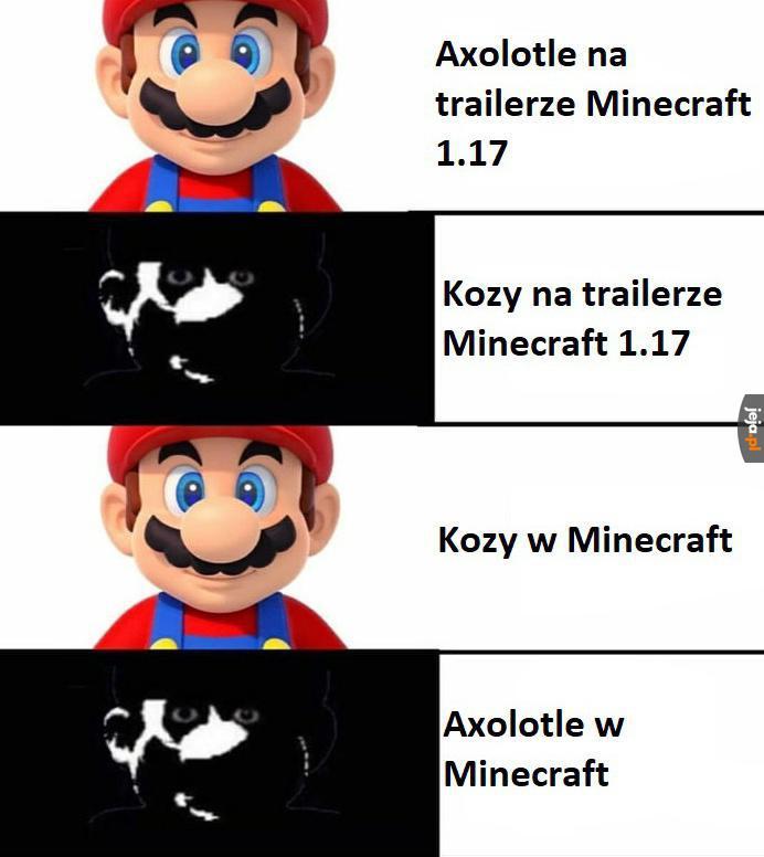 Czy ktoś jeszcze gra w Minecrafta?