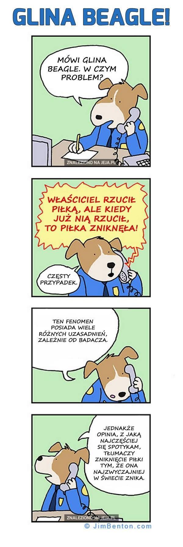 Glina Beagle i znikająca piłka