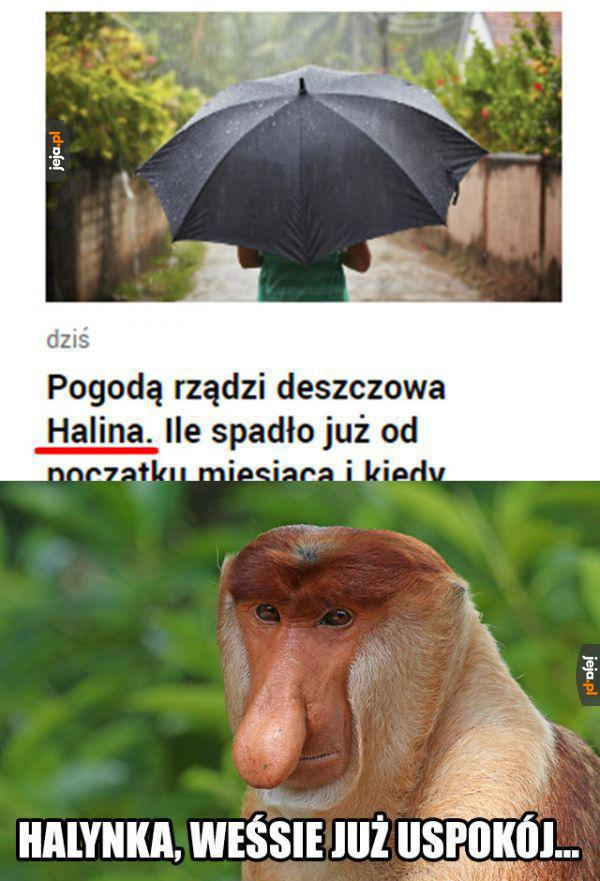 Halinka, no weź!