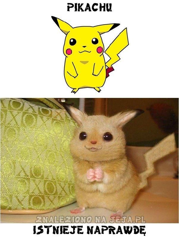 Pikachu istnieje naprawdę