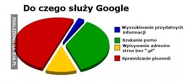 Prawda o Google