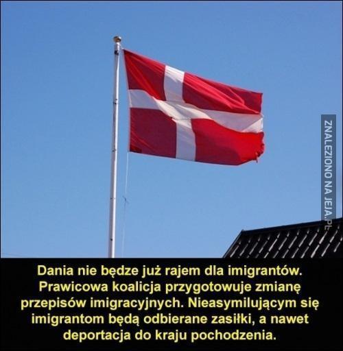 Mądra Dania?