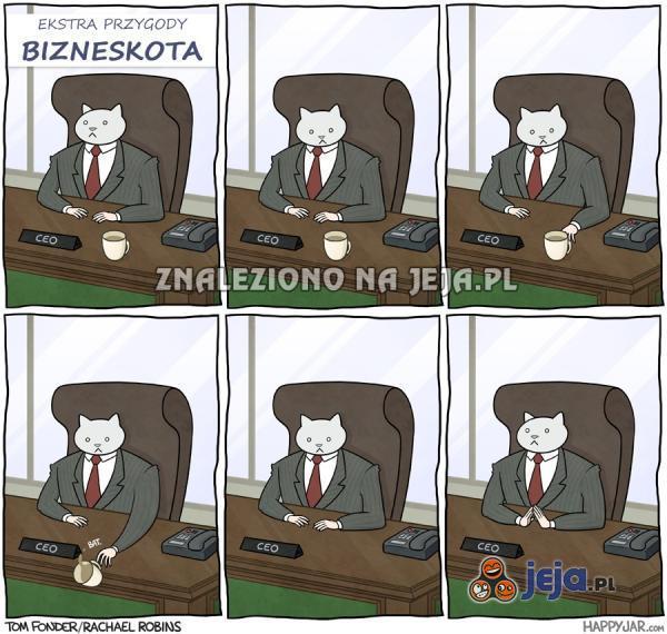 Bizneskot
