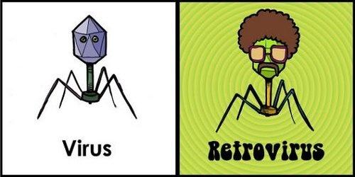Jak wygląda Wirus?