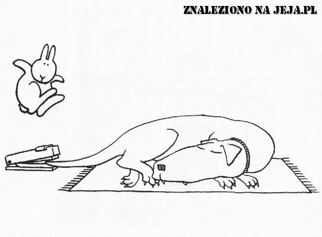 Samobójstwa zajączka: Zajączek i zszywacz
