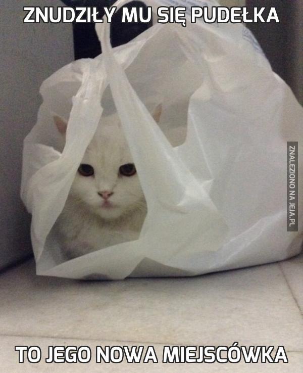Znudziły mu się pudełka