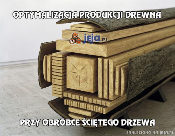 Optymalizacja produkcji drewna