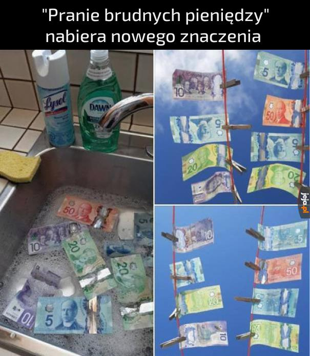 Na zdjęciu są przedstawione dolary kanadyjskie