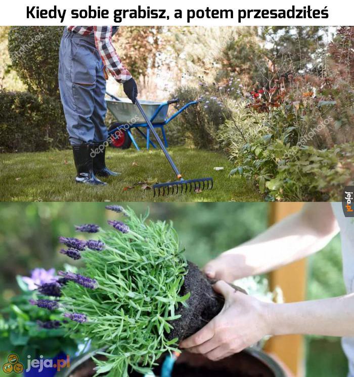 Ogrodnicy mają przez to ciężkie życie