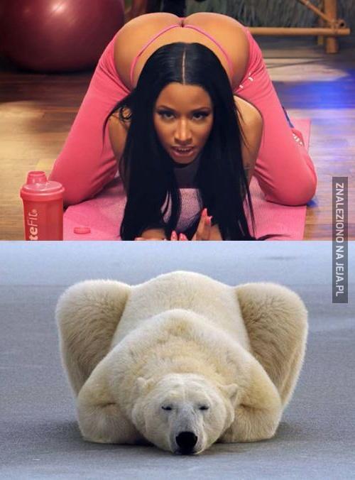 Nicki Minaj vs Miś polarny