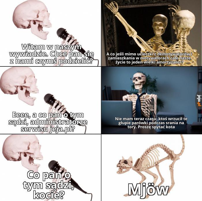 Rozterki życiowe szkieletów