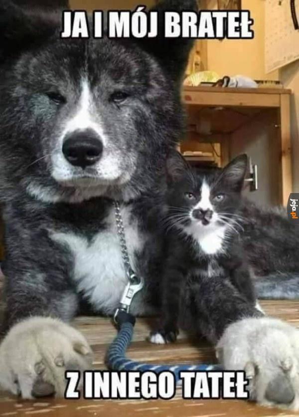 Słodkie rodzeństwo