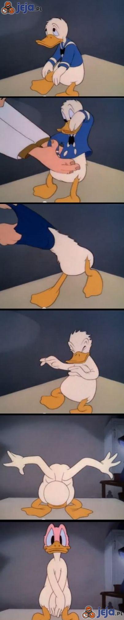 Logika Kaczora Donalda