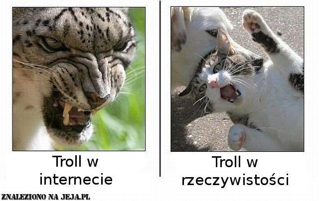Internet i rzeczywistość