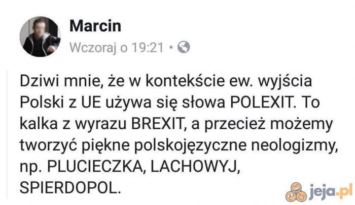 Język polski jest piękny!