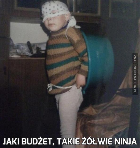 Jaki budżet, takie żółwie ninja