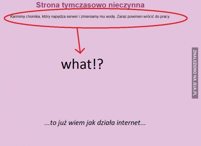 To już wiem jak działa internet