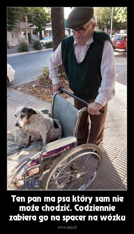 Prawdziwa miłość do psa
