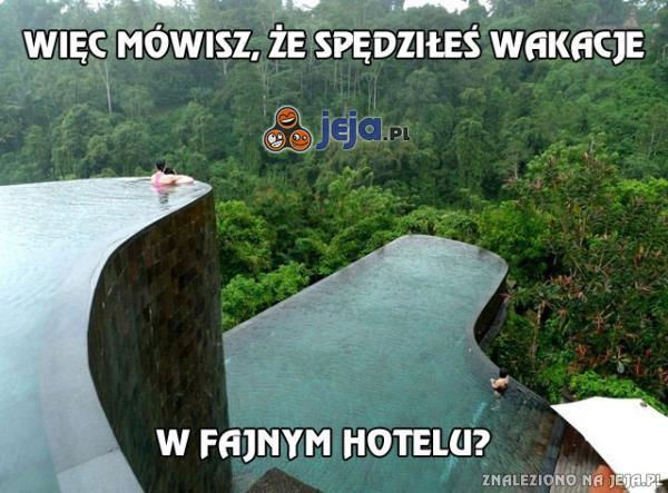 Więc mówisz, że spędziłeś wakacje w fajnym hotelu?