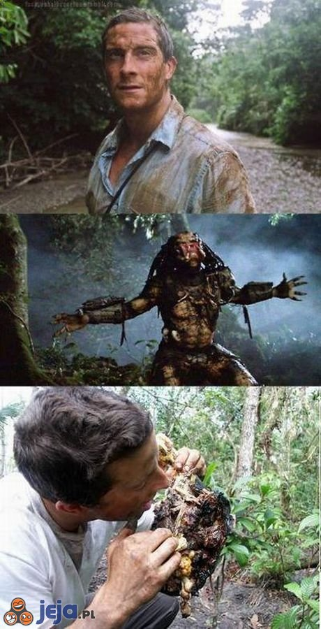 Bear Grylls vs Predator