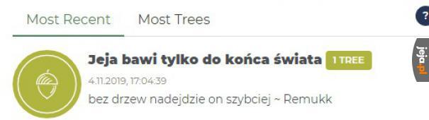 A Wy ile drzewek zasadziliście?