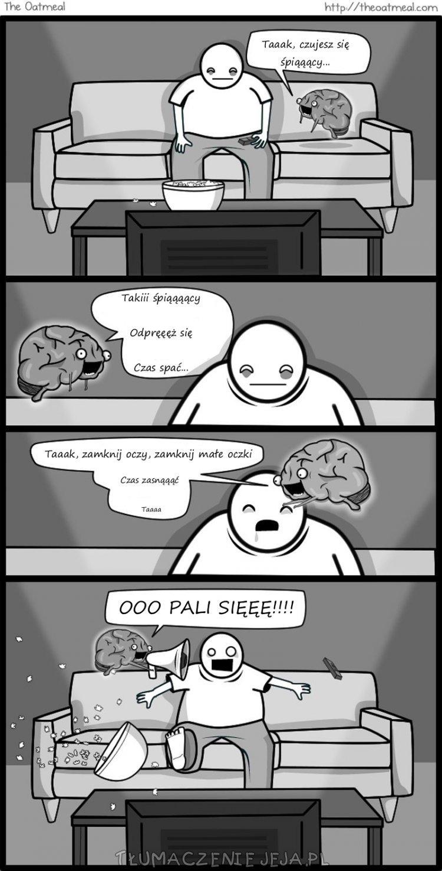 Wredny mózg: Robisz się śpiący