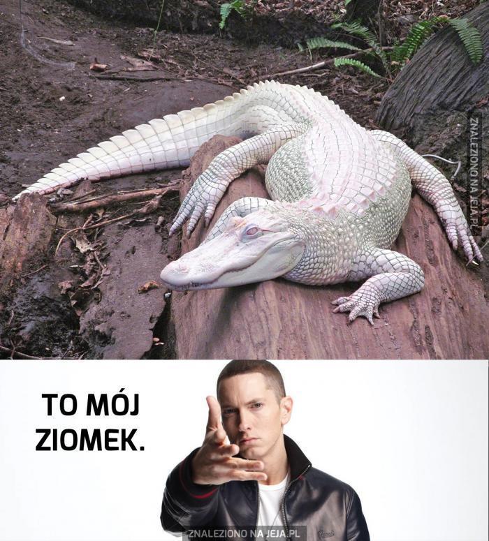 Zabójczy albinos