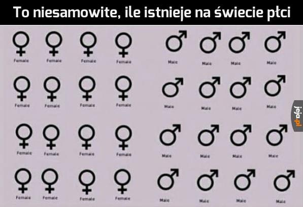 Taka różnorodność