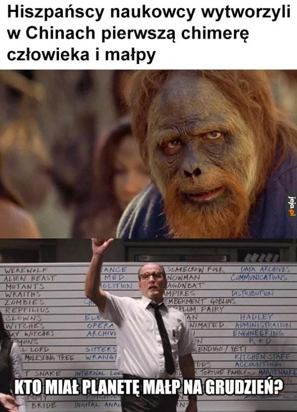 A na sylwestra King Kong