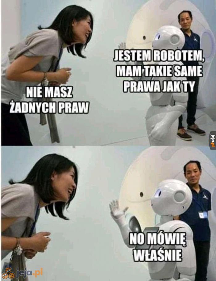 Robot mizogin