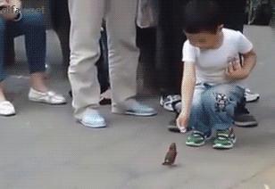 Oszczędny ptaszek