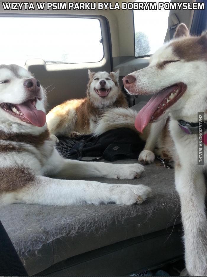 Wizyta w psim parku była dobrym pomysłem