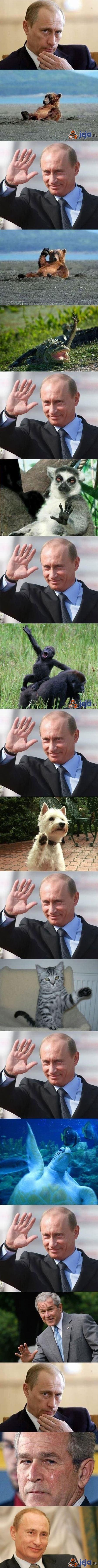 Putin przyjaciel zwierząt