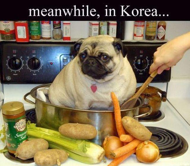 Koreański kurczak z warzywami