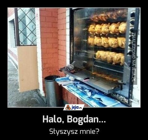 Halo, Bogdan...