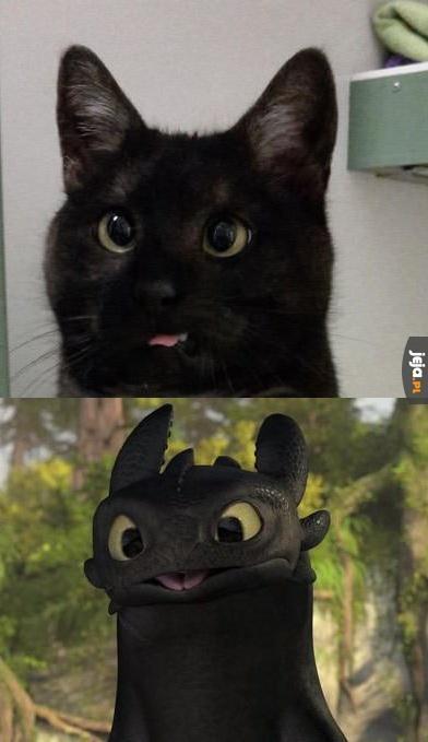 Kogoś mi przypomina