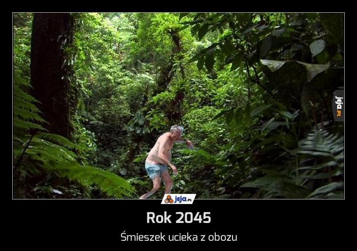 Rok 2045