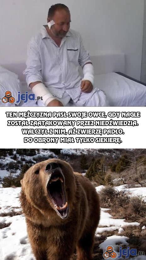 Mężczyzna pasł swoje owce, gdy nagle zaatakował go niedźwiedź