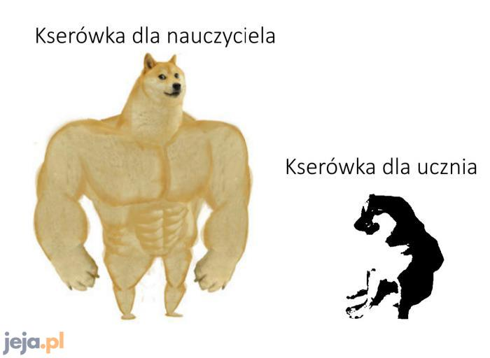 Taka szara