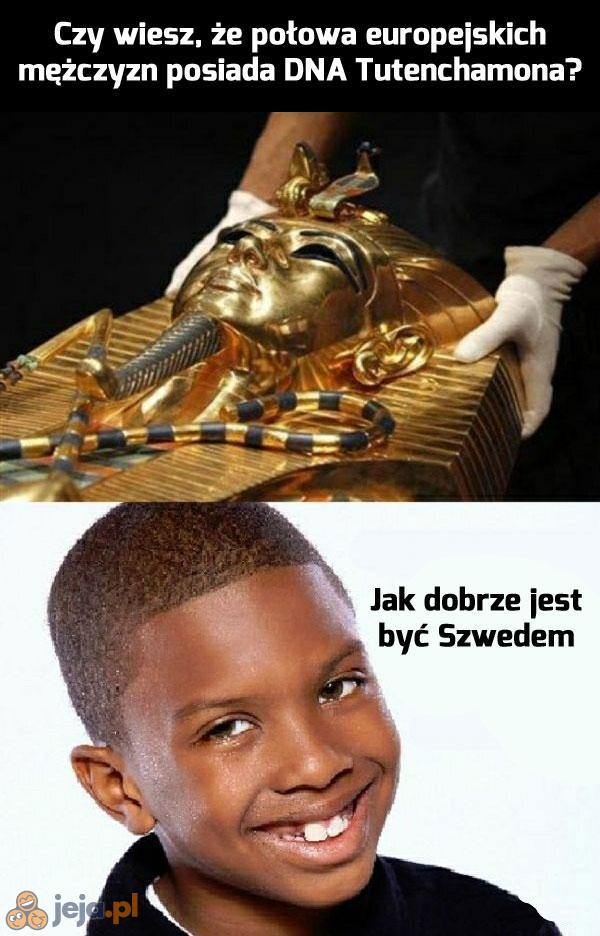 Rodowity Szwed