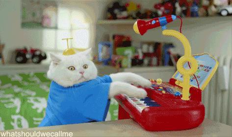 Jestę muzykię
