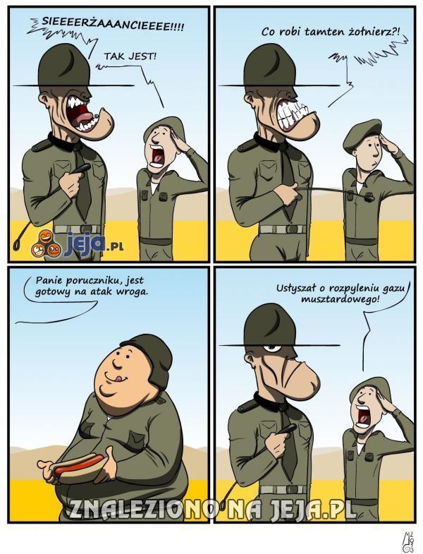 To właśnie amerykańskie wsparcie na wojnie...
