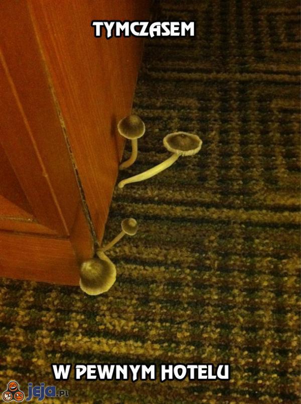 Tymczasem w pewnym hotelu