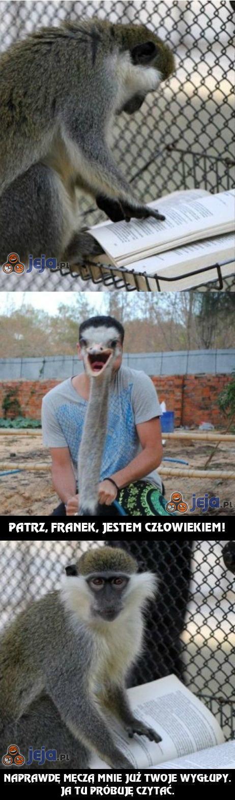Tymczasem w Zoo...